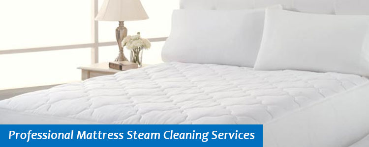 Professional Mattress Steam Cleaning Services